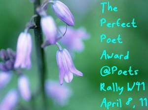 Perfect Poet Award Week 41